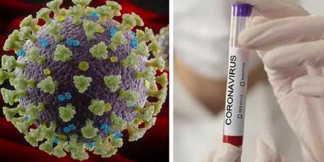 اهدای کیت تشخیص ویروس کرونا به مردم آمریکا